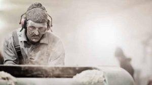 wood dust machine planers